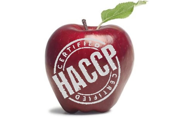 HACCP in Food Safety